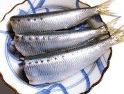 犬猫の手作りご飯におすすめの魚「真いわし 処理済み3尾」