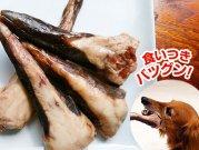 犬猫のカルシウム補給におすすめの生肉「鹿テール」