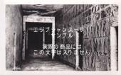 ビンテージポストカード ラムセス4世の墓【メール便OK】