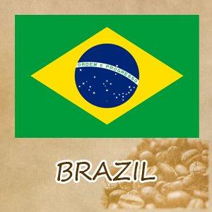 ブラジル「レクレイオ農園」 中深煎り(シティロースト)250g