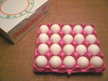 とよんちのたまご 白卵 20個入り