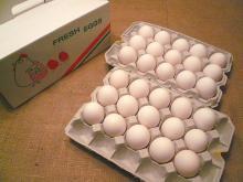 とよんちのたまご 白卵 30個入り