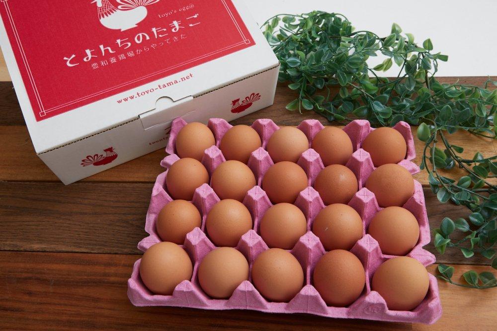 とよんちのたまご 王卵 20個入り
