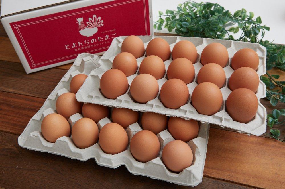 とよんちのたまご 王卵 30個入り