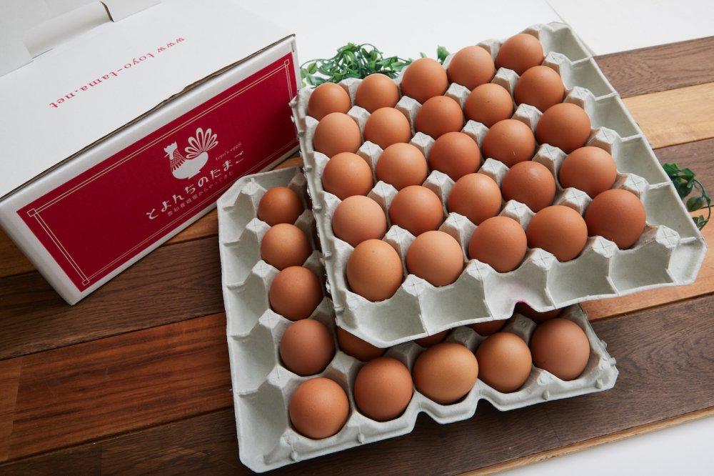 とよんちのたまご 王卵 50個入り