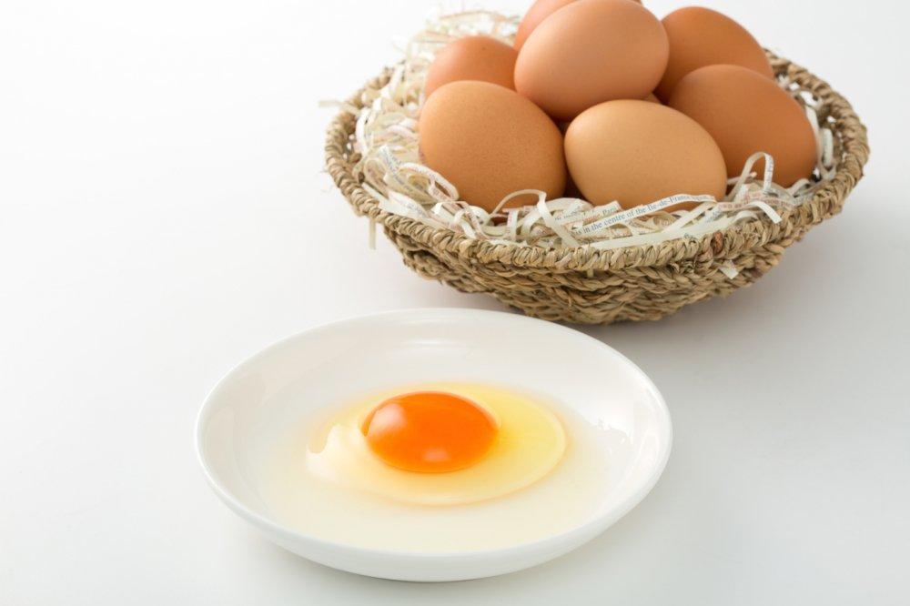とよんちのたまご 王卵 160個入り