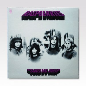 Raspberries ‎/ Starting Over/ LP [USED]