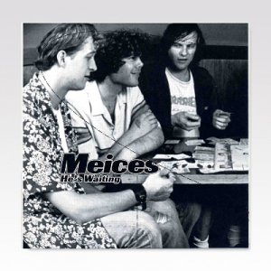 FASTBACKS:MEICES / SPLIT / 7