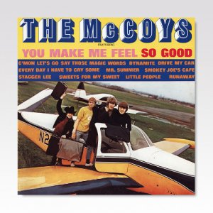 McCoys ‎/ You Make Me Feel So Good / LP [USED]