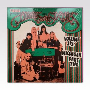VA / Highs In The Mid Sixties Volume Six: Michigan Part Two / LP [USED]