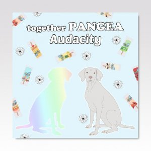 together PANGEA : AUDACITY/ SPLIT / 7