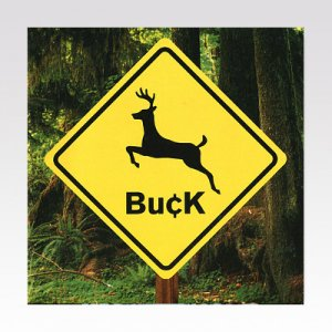 BUCK / ST / LP [USED]