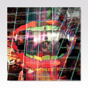 Animal Collective - Centipede Hz / LP [USED]