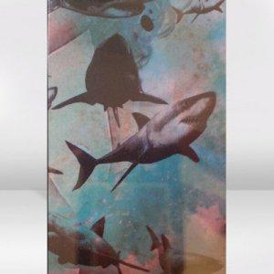 Empty Moon / The Shark / CASSETTE TAPE