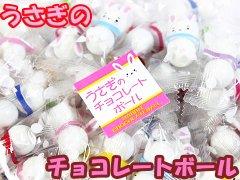 うさぎのチョコレートボール500g 【単価¥1035】1入