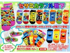 セサミカラフル靴下 2453 【単価¥65】12入