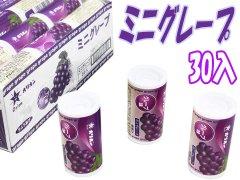 ミニグレープラムネ 【単価¥22.5】30入