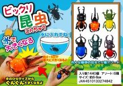 【現品限り・お買い得】ビックリ昆虫 2786 【単価¥23】24入