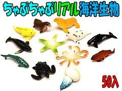 ちゃぷちゃぷリアル海洋生物 【単価¥19】50入
