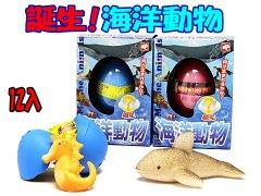 誕生!海洋生物 【単価¥60】12入