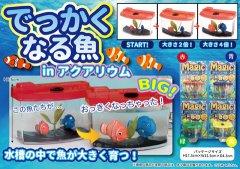 でっかくなる魚inアクアリウム 【単価¥63】4入