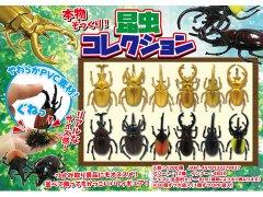 昆虫コレクション 3282 【単価¥33】50入