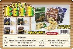 くみたて化石恐竜 【単価¥30】24入