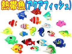 熱帯魚(アクアフィッシュ) 【単価¥14】100入