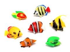バラエティ熱帯魚 【単価¥16】50入