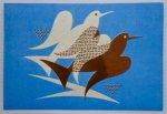 ポストカード/pigeon