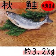 【新巻鮭 秋鮭(オス) 約3.2kg】