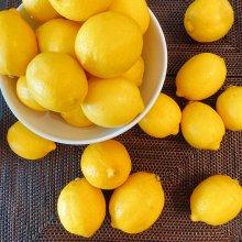 【産直】愛媛県岩城島産 越冬完熟 島レモン【5Kg】 レモンレシピ付き