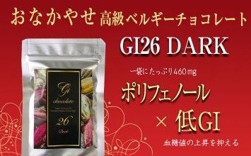 GI26 DARK【20g】