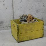 【SOLD】 antique wood box case (yellow)