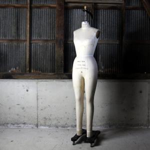 superior model form co old  Mannequin