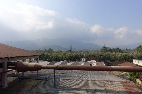 グァテマラ ブエナビスタ農園 ゲイシャ アンティグア