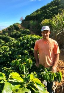ブラジル ヴィラーダ農園 カパラオ