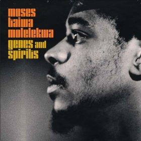 Moses Taiwa Molelekwa / Genes and Spirits