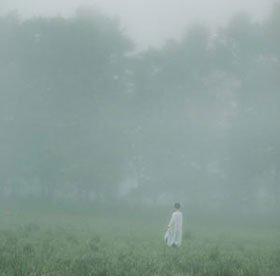 森ゆに / 山の朝霧