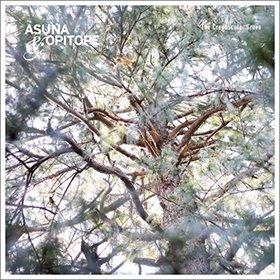 Asuna & Opitope / The Crepuscular Grove