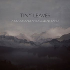 Tiny Leaves /  A Good Land, An Excellent Land (UK盤 限定盤 )<img class='new_mark_img2' src='https://img.shop-pro.jp/img/new/icons20.gif' style='border:none;display:inline;margin:0px;padding:0px;width:auto;' />