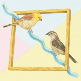 Sparrows /  Collected Visits