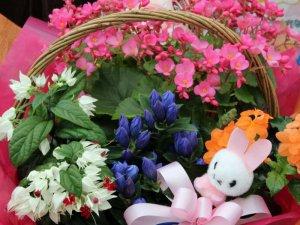 花かごセット(中)
