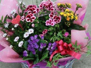 花かごセット(大)