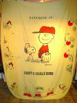 <img class='new_mark_img1' src='https://img.shop-pro.jp/img/new/icons43.gif' style='border:none;display:inline;margin:0px;padding:0px;width:auto;' />VINTAGE SNOOPY&CHARLIE BROWN BED COVER
