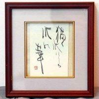 小泉香雨・書画・額入『描く水にも水の華』