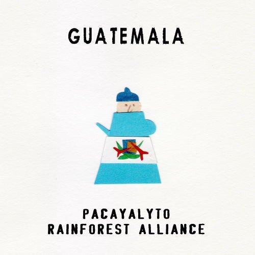 グァテマラ パカヤリト農園 [Rainforest Alliance認証]【ドリップバッグ[1杯分]】