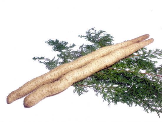 星とろろ「自然薯」1150~1199g 78cm箱2本入り