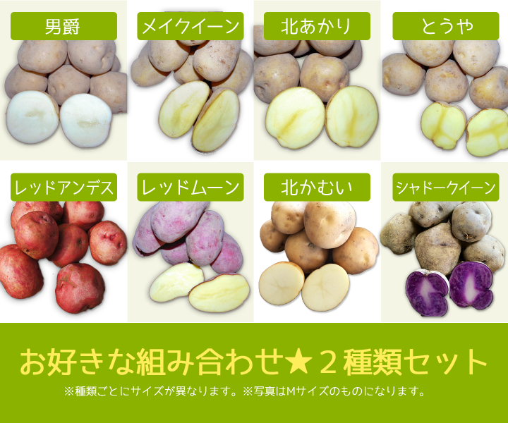 【20kg】北海道美瑛町産じゃがいも2種類詰め合わせセットの商品画像