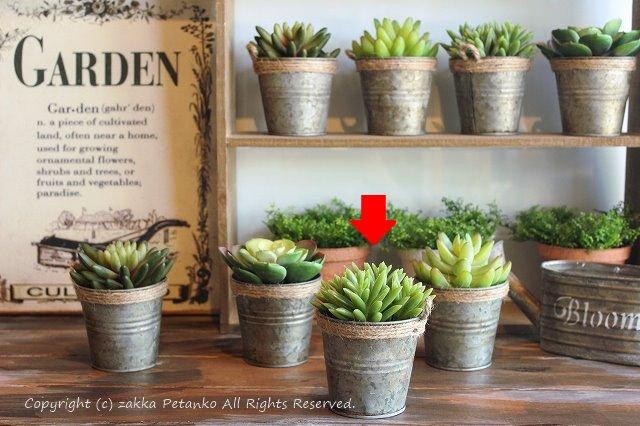多肉植物(Lサイズ)|造花B